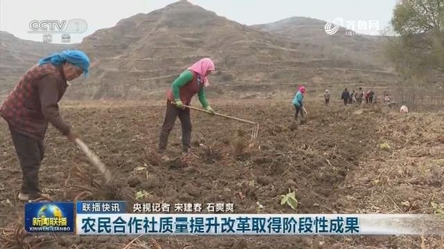【联播快讯】农民合作社质量提升改革取得阶段性成果