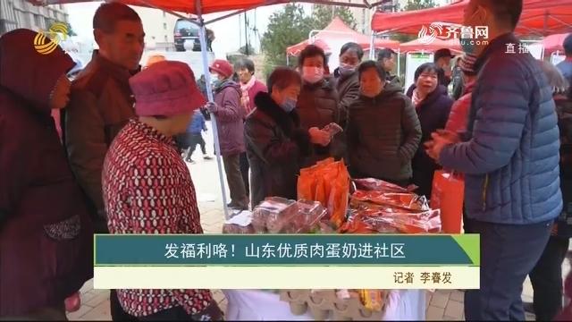 【齐鲁畜牧】发福利咯!山东优质肉蛋奶进社区