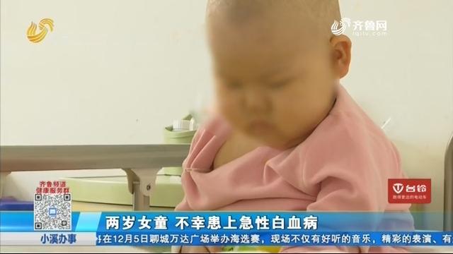 两岁女童 不幸患上急性白血病