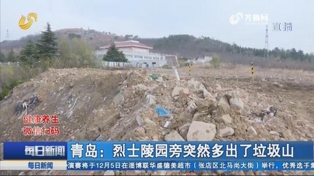 青岛:烈士陵园旁突然多出了垃圾山