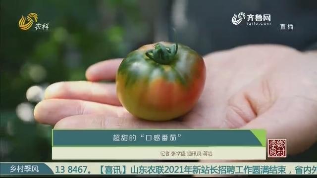 """超甜的""""口感番茄"""""""