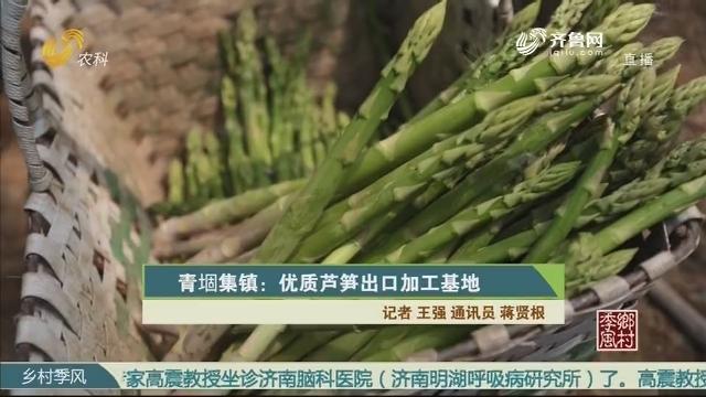 青堌集镇:优质芦笋出口加工基地