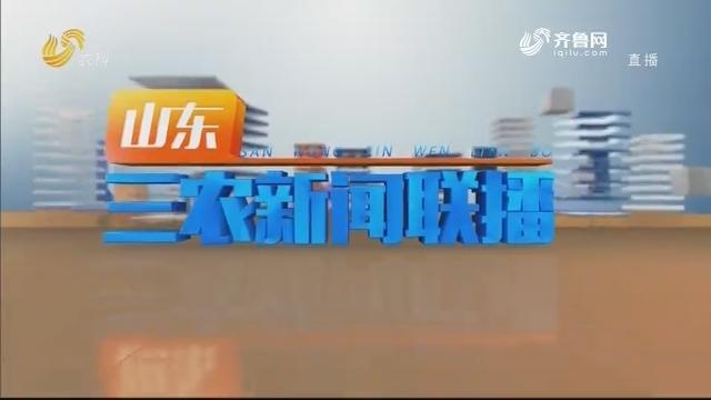 2020年12月05日山东三农新闻联播完整版
