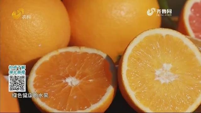 20201206《中国原产递》:湖北秭归脐橙