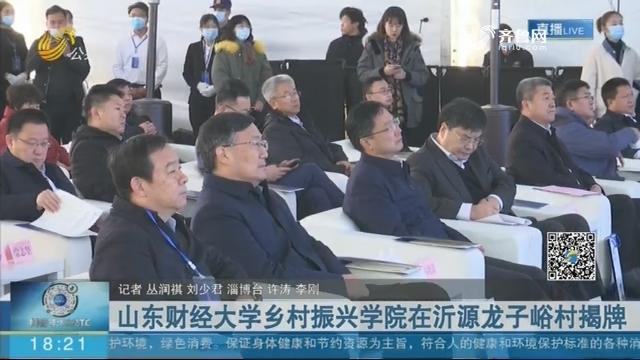 山东财经大学乡村振兴学院在沂源龙子峪村揭牌