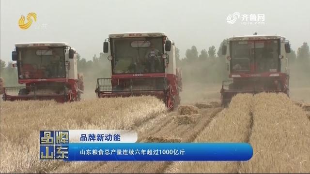 【品牌新动能】山东粮食总产量连续六年超过1000亿斤