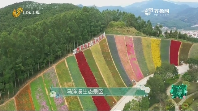 20201206《田园中国》:马洋溪生态景区