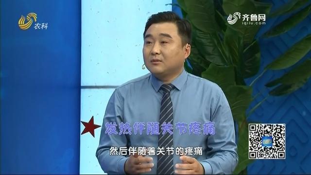 20201206《名医话健康》:名医杨振国——风湿性关节炎的中医治疗