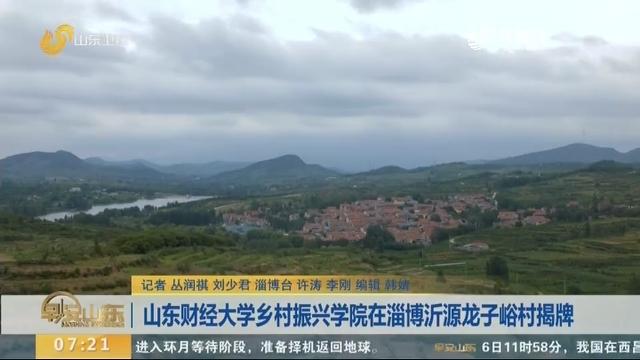 山东财经大学乡村振兴学院在淄博沂源龙子峪村揭牌