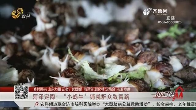 """【乡村振兴 山东力量】 菏泽定陶:""""小蜗牛""""铺就群众致富路"""