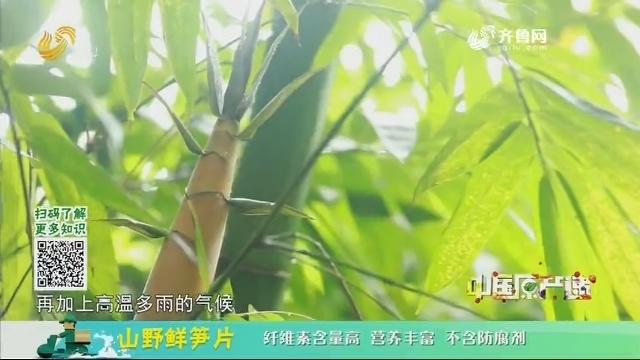 20201208《中国原产递》:山野鲜笋片