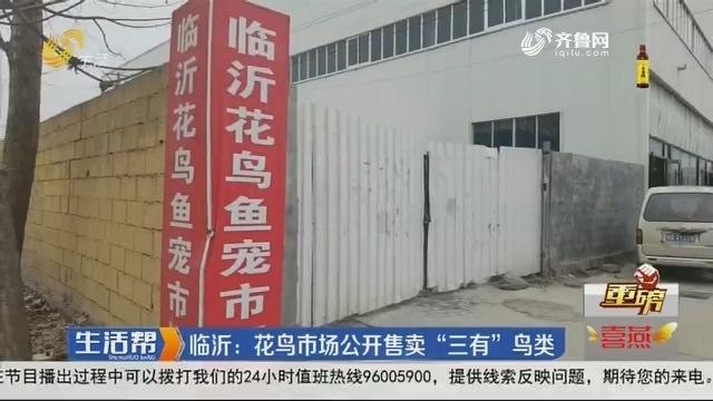 """【重磅】临沂:花鸟市场公开售卖""""三有""""鸟类"""