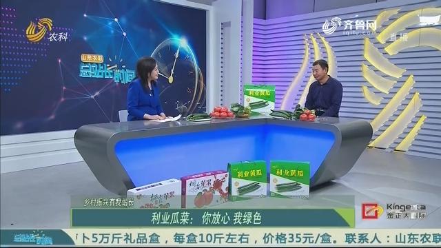 【乡村振兴有我站长】利业瓜菜:你放心 我绿色