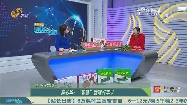 """【乡村振兴有我站长】高彩华:""""智慧""""管理好苹果"""