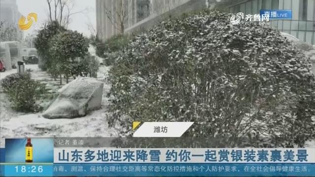 山东多地迎来降雪 约你一起赏银装素裹美景