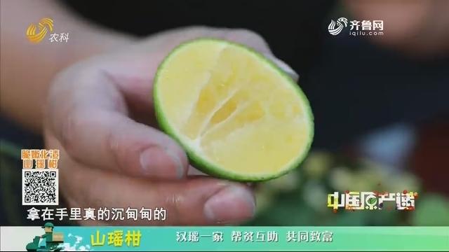 20201213《中国原产递》:山瑶柑