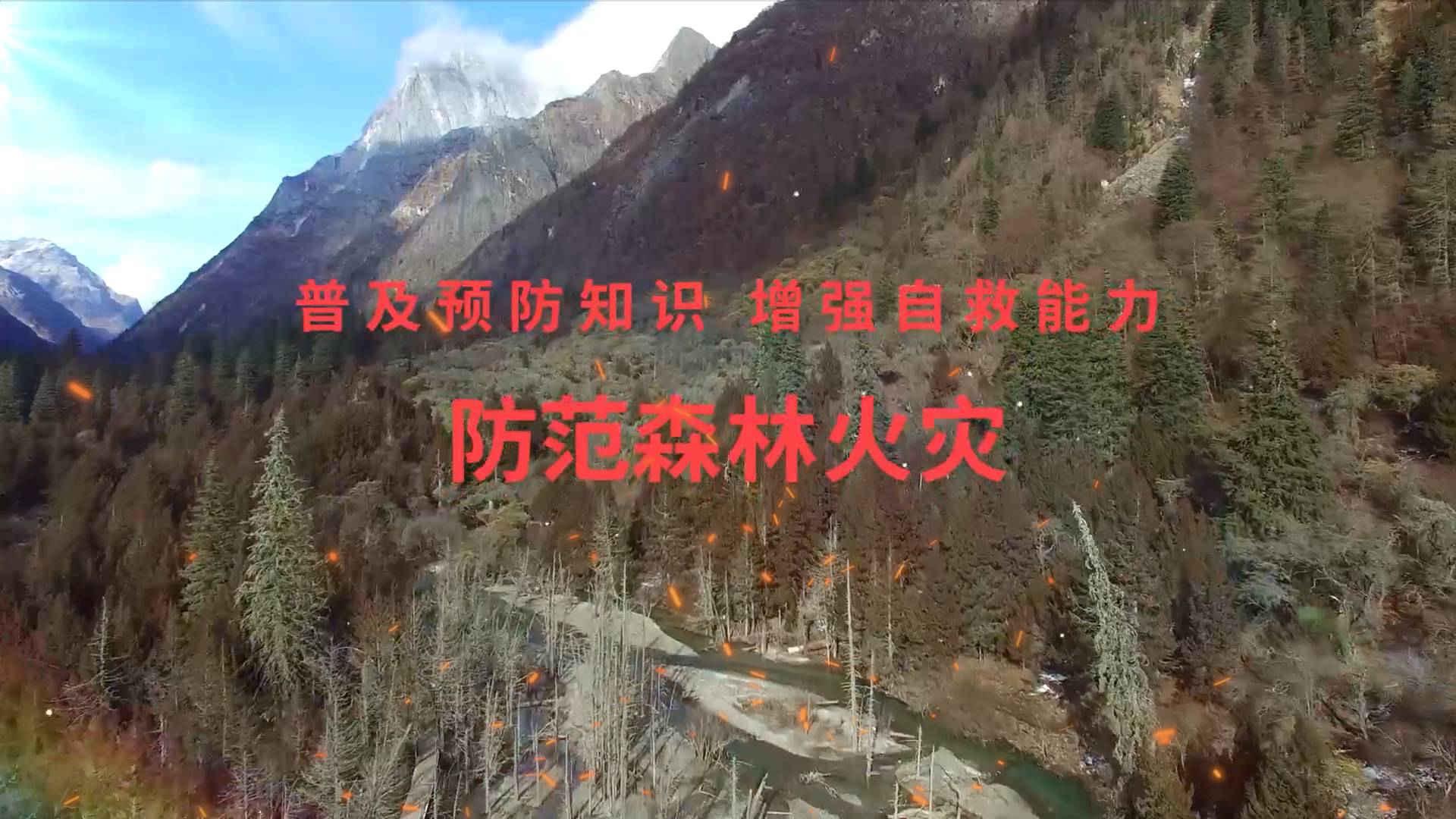 《应急在线》20201213: 防范森林火灾