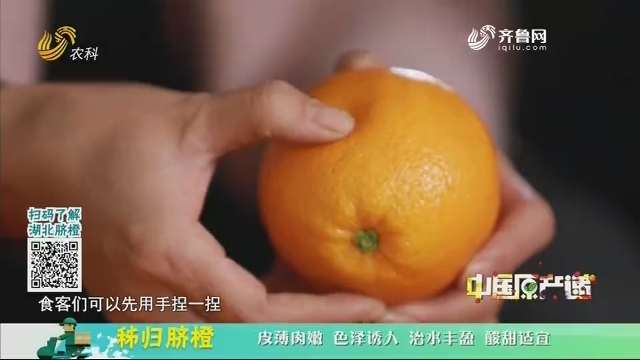 20201217《中国原产递》:秭归脐橙