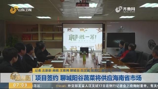 项目签约 聊城阳谷蔬菜将供应海南省市场