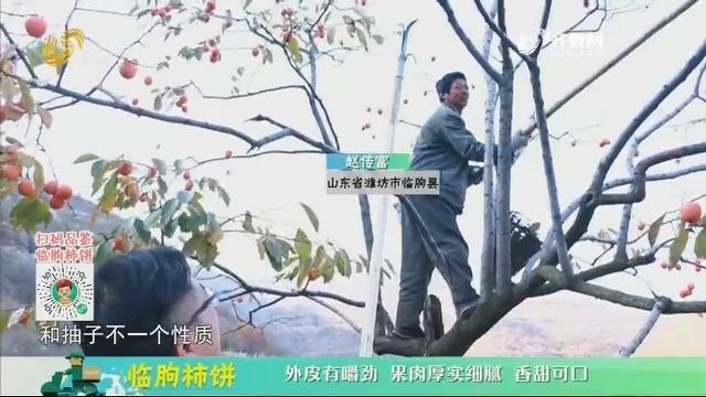 20201220《中国原产递》:临朐柿饼
