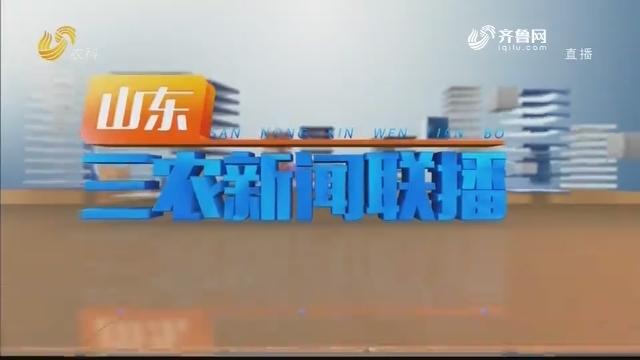 2020年12月20日山东三农新闻联播完整版