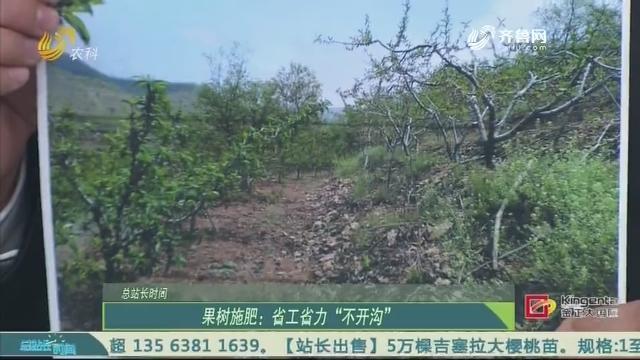 """【总站长时间】果树施肥:省工省力""""不开沟"""""""