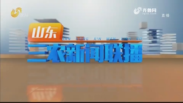 2020年12月21日山东三农新闻联播完整版