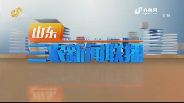 2020年12月22日山东三农新闻联播完整版