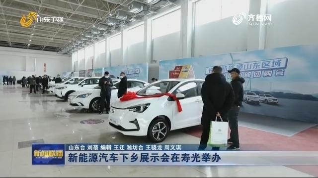 新能源汽车下乡展示会在寿光举办