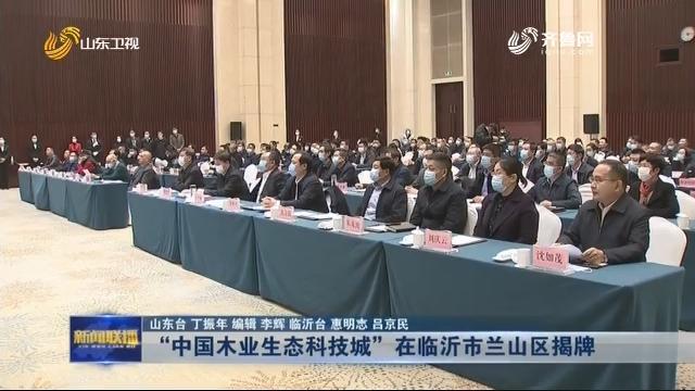 """""""中国木业生态科技城""""在临沂市兰山区揭牌"""