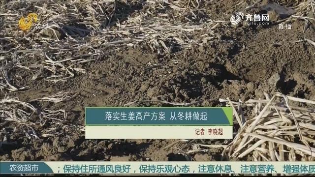 落实生姜高产方案 从冬耕做起
