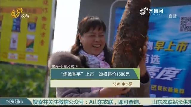 """【史丹利·星光農場】""""炮彈香芋""""上市 20根售價1580元"""