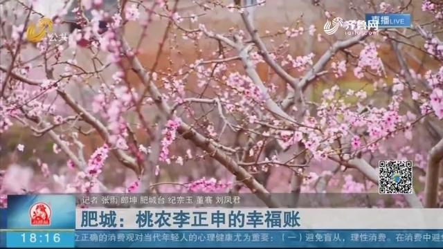 肥城:桃农李正申的幸福账