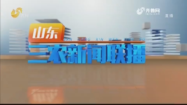 2020年12月26日山东三农新闻联播完整版