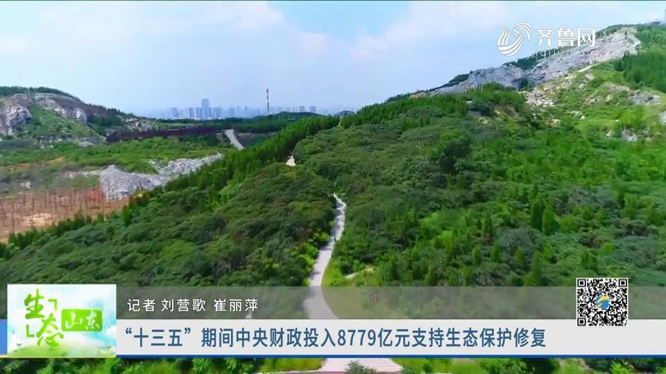 """""""十三五""""期间中央财政投入8779亿元支持生态?;ば薷?></a>                         </dt>                         <dd>                             <h3><a href="""