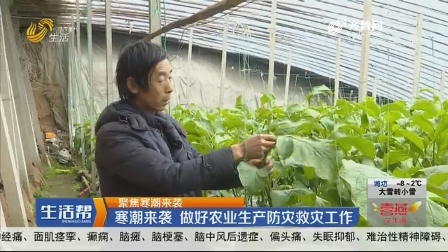 【聚焦寒潮来袭】寒潮来袭 做好农业生产防灾救灾工作