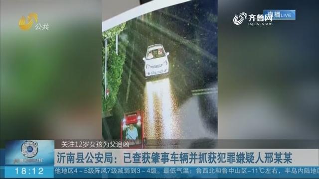 沂南县公安局:已查获肇事车辆并抓获犯罪嫌疑人邢某某