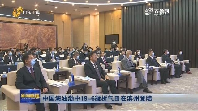 中国海油渤中19-6凝析气田在滨州登陆