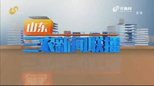 2020年12月28日山东三农新闻联播完整版