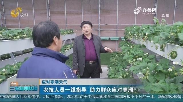 【应对寒潮天气】农技人员一线指导 助力群众应对寒潮