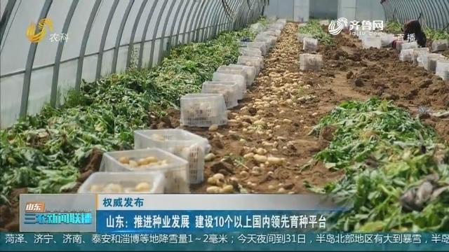 【权威发布】山东:推动种业发展 建设10个以上国内领先育种平台