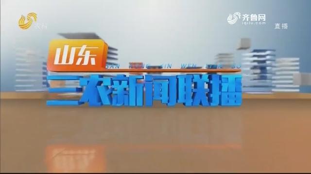 2020年12月29日山东三农新闻联播完整版