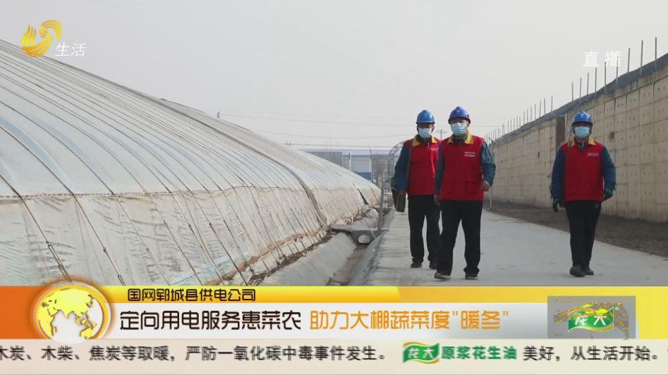 """定向用电服务惠菜农 助力大棚蔬菜度""""暖冬"""""""