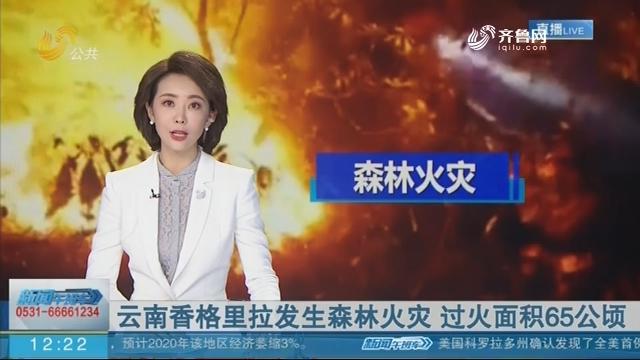 云南香格里拉发生森林火灾 过火面积65公顷