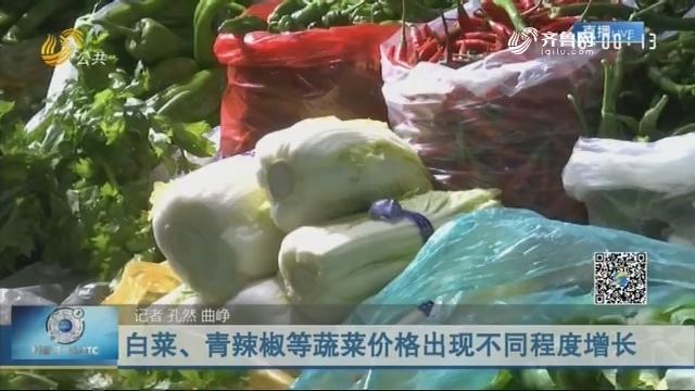 白菜、青辣椒等蔬菜价格出现不同程度增长
