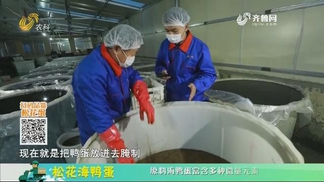 20210104《中国原产递》:松花海鸭蛋