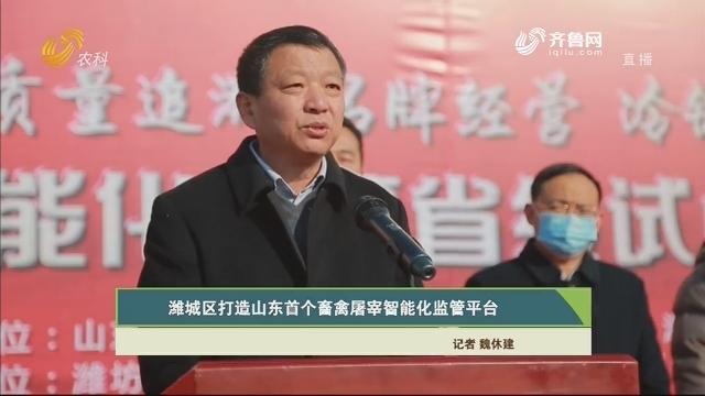 【齐鲁畜牧】潍城区打造山东首个畜禽屠宰智能化监管平台