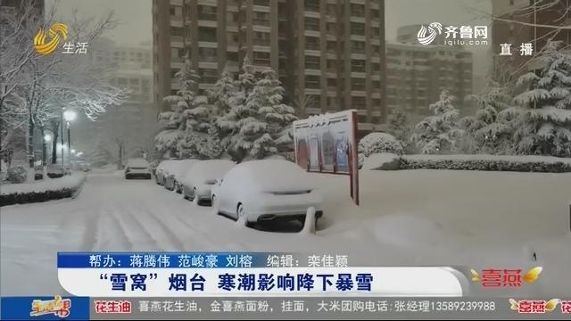 """""""雪窝""""烟台 寒潮影响降下暴雪"""