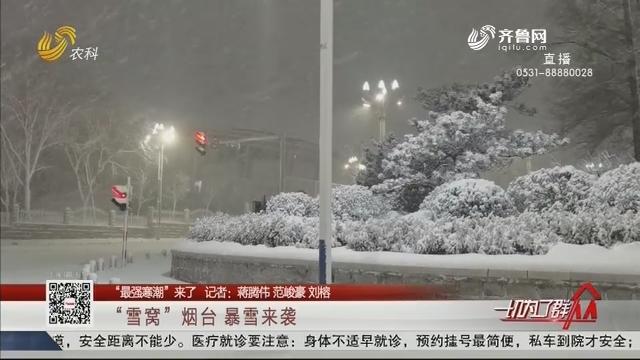 """【""""最强寒潮""""来了】""""雪窝""""烟台 暴雪来袭"""