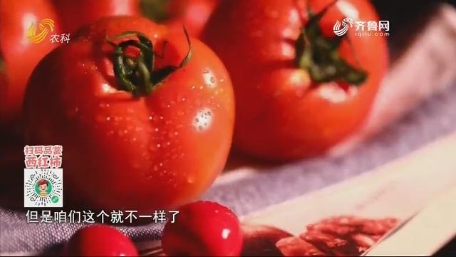 20210108《中国原产递》:临朐柿饼